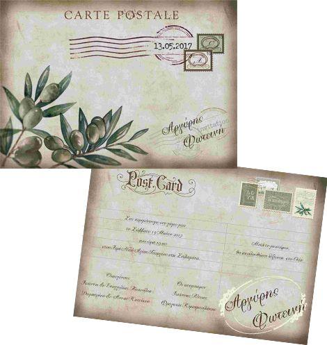Vintage κλαδί ελιάς post card